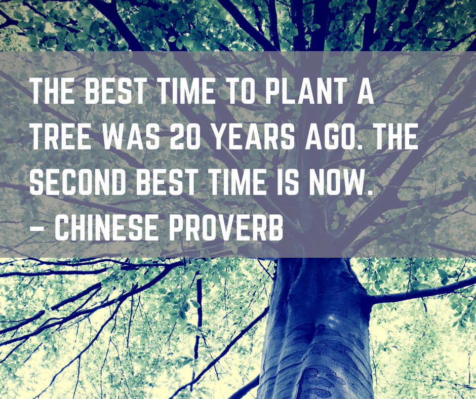 5 reasons to start content marketing before your product launch - chinese proverb tree planting